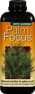 Palm Focus Concentrated Liquid Fertiliser 1 Litre