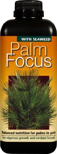 engrais-concentre-liquide-de-premiere-qualite-palm-focus-1-litre