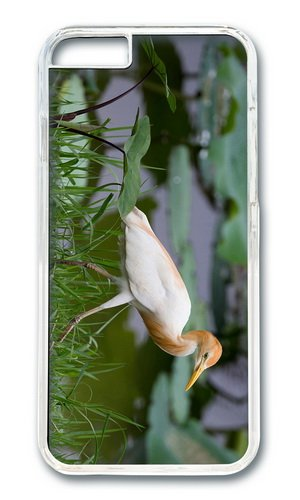 Lake Grass Bird Heron Egyptian Pc Transparent Hard Case For Apple Iphone 6(4.7 Inch) front-64204