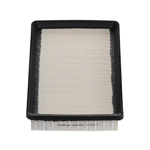 Champion CAP9392 Panel Air Filter
