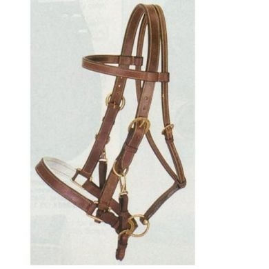 Aussie Leather Bridle/Halter Combination