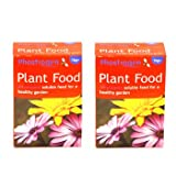 2 x Phostrogen All Purpose Soluble Plant Food 1kg