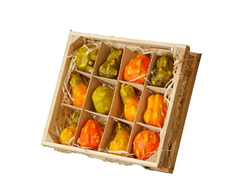 Your Hearts Delight 7-1/2 by 6-3/4 by 2-Inch Gourds in Wood Crate Decor, Mini