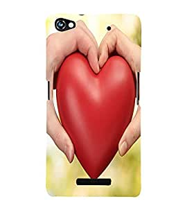 Perfect print Back cover for Micromax Canvas Hue 2 A316