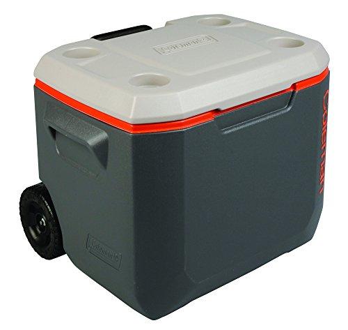 coleman-kuhlbox-mit-isolierungsschaum-grau-47-l
