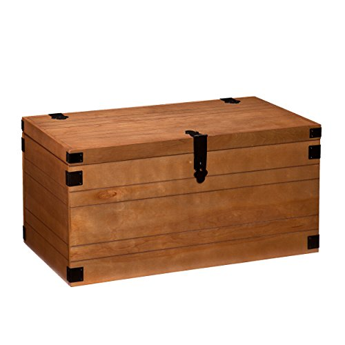 Southern Enterprises Coronado Trunk Coffee/Cocktail Table, Warm Autumn Oak