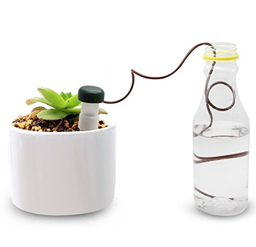 demarkt-indoor-automatic-watering-system-self-watering-probes-houseplant-spikes-for-plant-pack-of-10