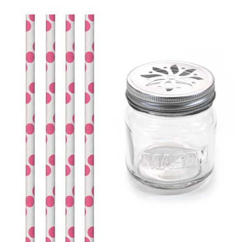 Dress My Cupcake Dmc31354 Vintage Glass Drinking Mason Jar Sippers With Flower Lid And Paper Straws Party Kit, Fuchsia Hot Pink Polka Dot, Set Of 12 front-508326