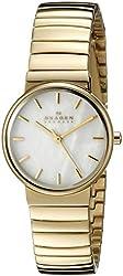 Skagen Women's SKW2199 Ancher Gold-Tone Stainless Steel Watch