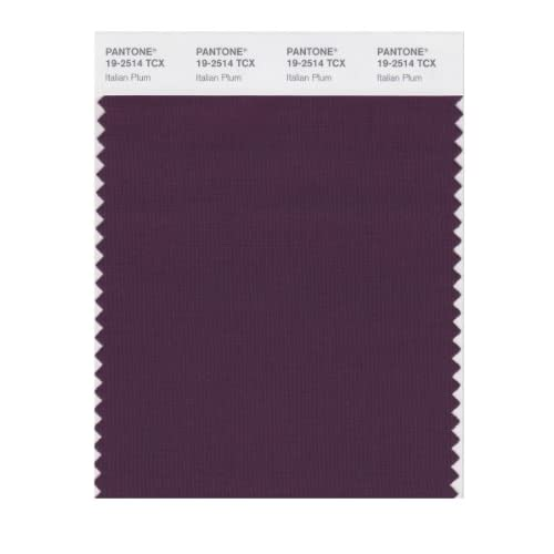 Amazon.com: PANTONE SMART 19-2514X Color Swatch Card, Italian Plum