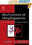 Mechanisms of Morphogenesis