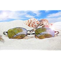 Sunglasses on the Beach with Seashells - Peel and Stick Wall Decal by Wallmonkeys