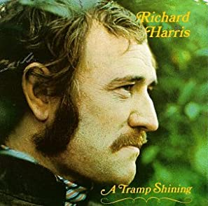 Cover of &quot;Tramp Shining&quot;