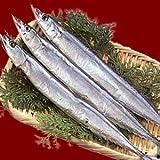 甘塩 さんま 150gサンマ秋刀魚×5尾