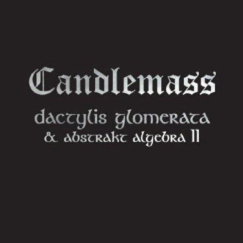 Dactylis Glomerate & Abstrakt