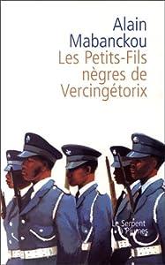 Les Petits-fils negres de Vercingetorix