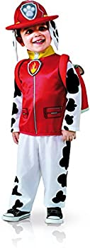 Up to 35% off on Halloween Costumes & More
