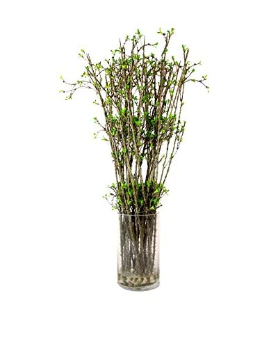 Creative Displays Budding Spring Branch Water Vase, Green/Brown