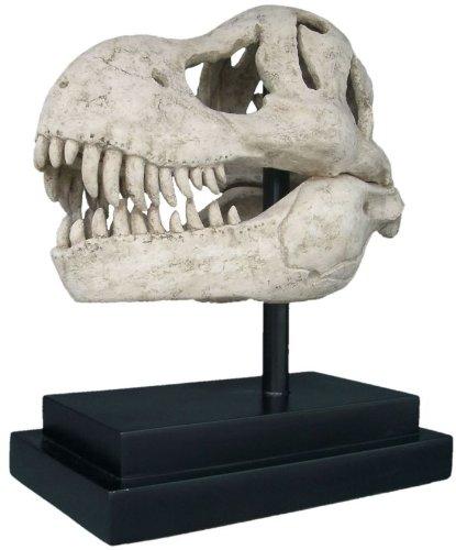 T-Rex Dinosaur Skull Statue