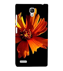 PrintVisa Flower Design 3D Hard Polycarbonate Designer Back Case Cover for Xiaomi Redmi Note