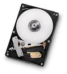 HGST Deskstar 3.5-Inch 1TB 7200RPM SATA III 6Gbps 32MB Cache Internal Hard Drive (0F13180) [Amazon Frustration-Free Packaging]