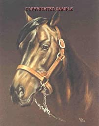Derby Winner - Drawing by Cindy Farmer