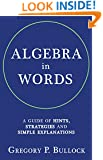 ALGEBRA in WORDS: A Guide of Hints, Strategies and Simple Explanations