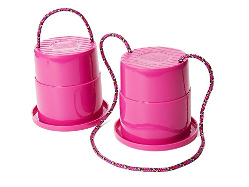 Set of 2 EZ Steppers (Raspberry)