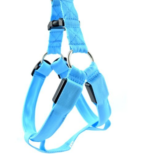 """Happy Pets Belt Harness Tether Led Flashing Light Led Nylon Collar Bust Size S: 12.6""""-15.7"""" (32-40Cm) With No Leash (Blue)"""