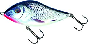 Amazon.com : Salmo Leurre coulant Real Gris Shiner 12cm : General