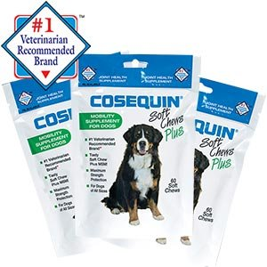 cosequin soft chews 180 count mobility supplement for dogs best vitamins store. Black Bedroom Furniture Sets. Home Design Ideas