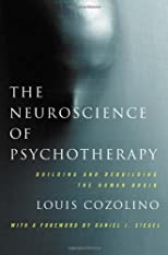 The neuroscience of psychotherapy : healing the social brain