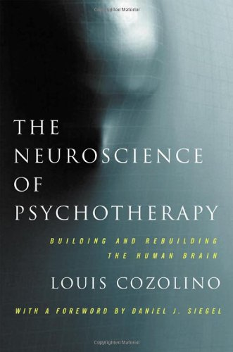 The Neuroscience of Psychotherapy: Healing the Social Brain (Second Edition)  (Norton Series on Interpersonal Neurobiolo