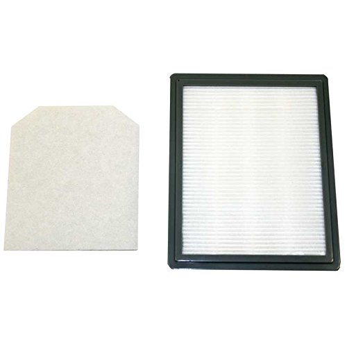 Riccar RF15 Genuine HEPA Filter for 1500 series Canisters (Riccar Filters compare prices)