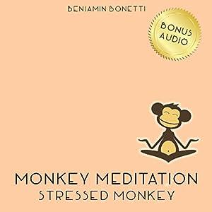 Stressed Monkey Meditation – Meditation For Reducing Stress Speech