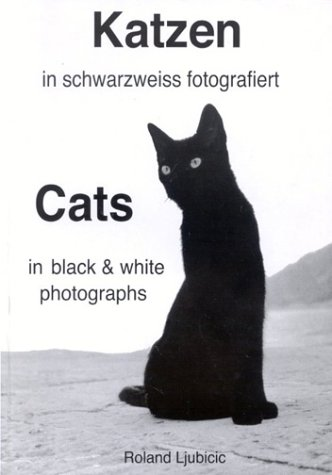 Katzen in schwarzweiss fotografiert. Cats in black and white photographs.