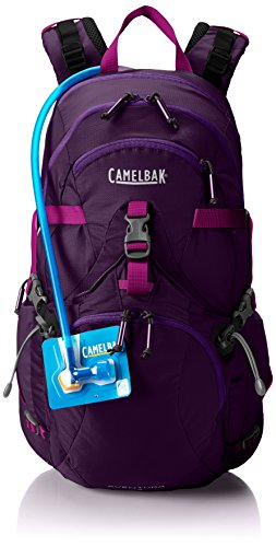 Camelbak Products Women's Aventura 22 Hydration Pack, Blackberry Cordial/Grape Juice, 100-Ounce