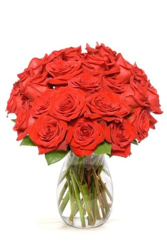 benchmark-bouquets-2-dozen-red-roses-with-vase