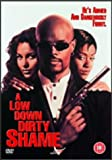 A Low Down Dirty Shame [DVD] [1995]