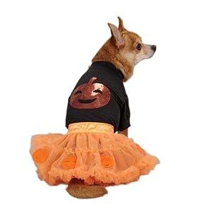 Zack & Zoey Pumpkin Costume Set for Pets, Small, Orange