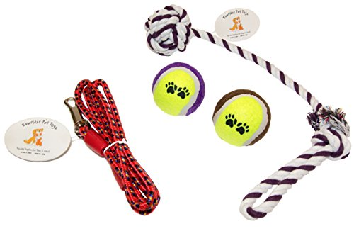 Everlast Pet Toys Best Rope Amp Leash Bundle For Dogs
