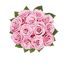 Flowers and Friends - Eshopclub Fresh Flowers - Wedding Flowers Bouquets - Birthday Flowers - Send Flowers - Flower Delivery - Flower Arrangements - Floral Arrangements - Flowers Delivered - Sending Flowers