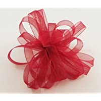 Offray Lady Chiffon Sheer Ribbon, 3/8