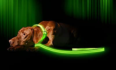 LED Dog Leash - USB Rechargeable - Make Your Dog More Visible & Safe - 6 Colors (Red, Blue, Green, Pink, Orange & Yellow) - Also Check our Matching Illumiseen LED Collar