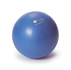 Sissel Securemax® Professional Exercise Ball by SPM Supplies