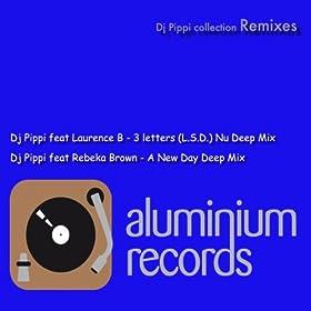 DJ Pippi and Laurence B. Do U Feel It
