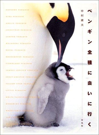 ペンギンの画像 p1_26