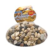 Greenbrier Bag of Decorative River Pebbles/Accent Stones, 32 oz