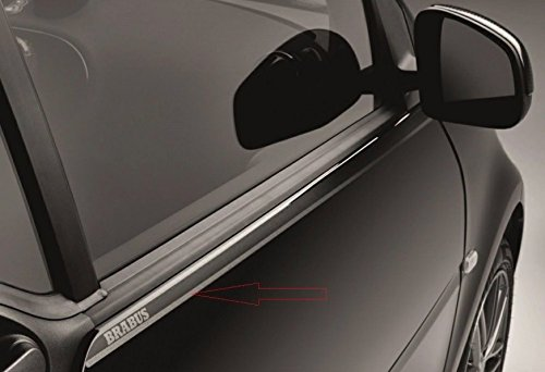 2-logo-brabus-porte-fenetre-smart-fortwo-453