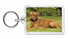 Dogue De Bordeaux Photo Keyring Animal Gift